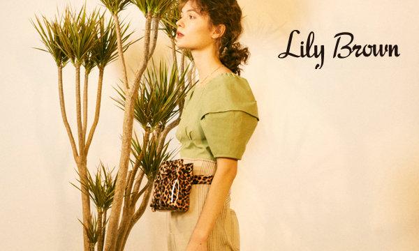 郑州 Lily Brown 专卖店、实体店