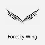 Foresky Wing/森空之翼 一个有灵魂的饰品潮牌
