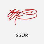 SSUR 由恶搞蹿红的美国街牌