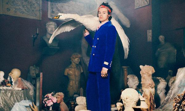 Gucci 2019 早秋男士正装系列广告,Harry Styles 出镜演绎!