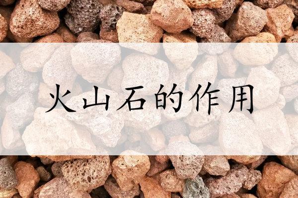 火山石的作用常常被忽略,原来它对人体有这些好处~
